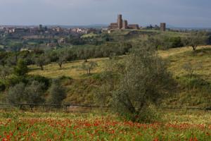 Tuscania__maggio_2008_-39